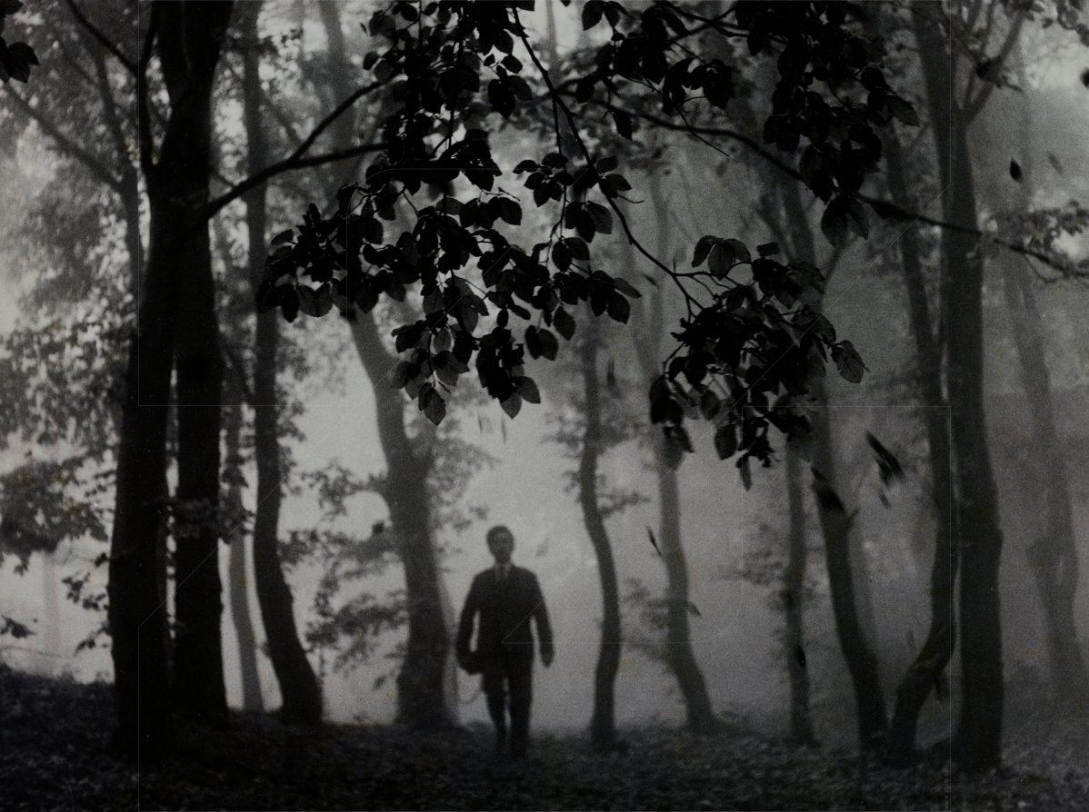 Ján Náhlik - V jesennom lese